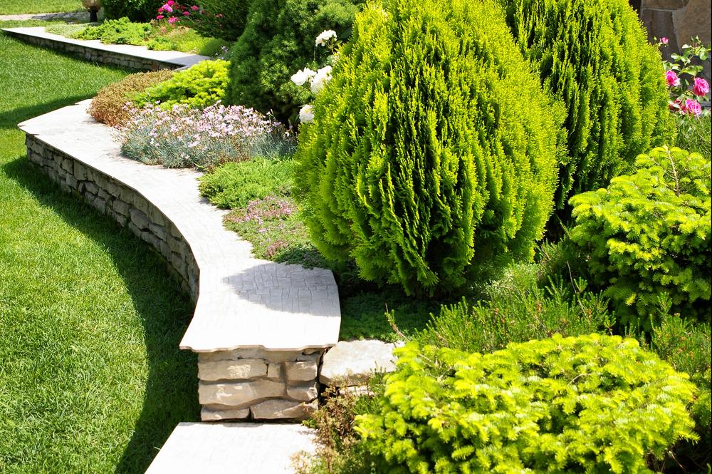 nicely landscaped garden