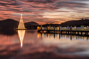 lighted Christmas tree over the water at sunset