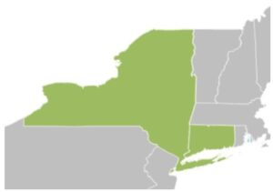 map of new england with New York and Connecticut highlighted