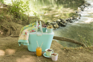 picnic basket and blanket by the lake