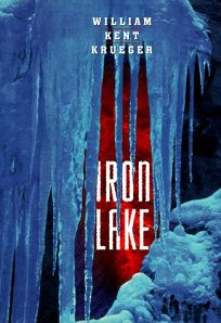 book cover of Iron Lake