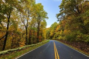 scenic autumn drive