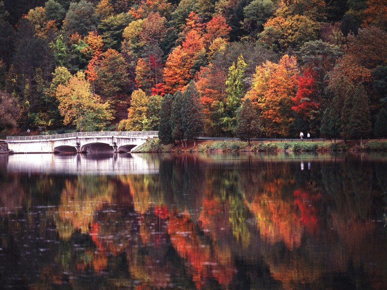 Serene lake during autumn with colorful trees