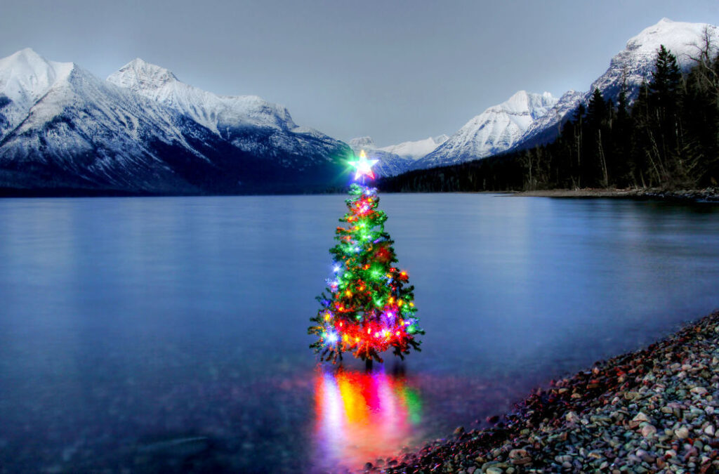 Lit Christmas tree in lake surrounded by snow capped mountains