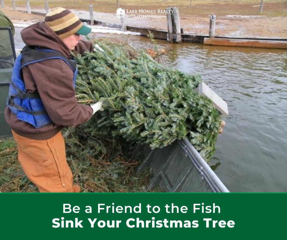 Disposing Of Christmas Trees: Sink Your Christmas Tree