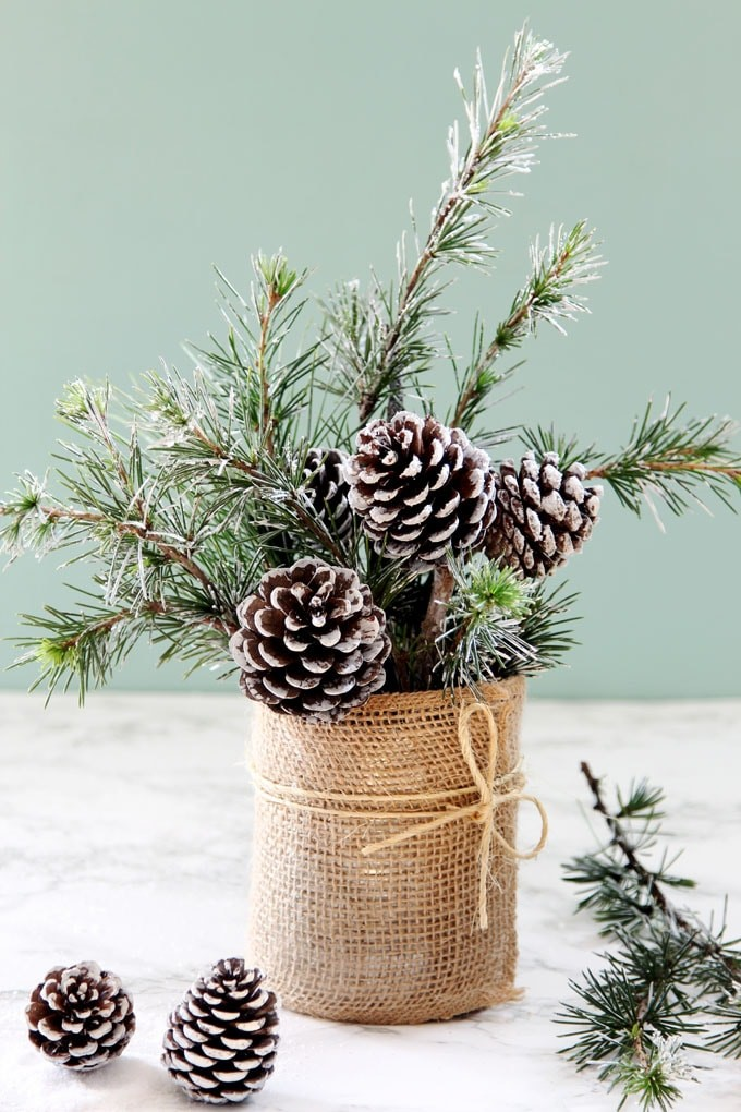 Evergreen sprigs as accent pieces in DIY vase