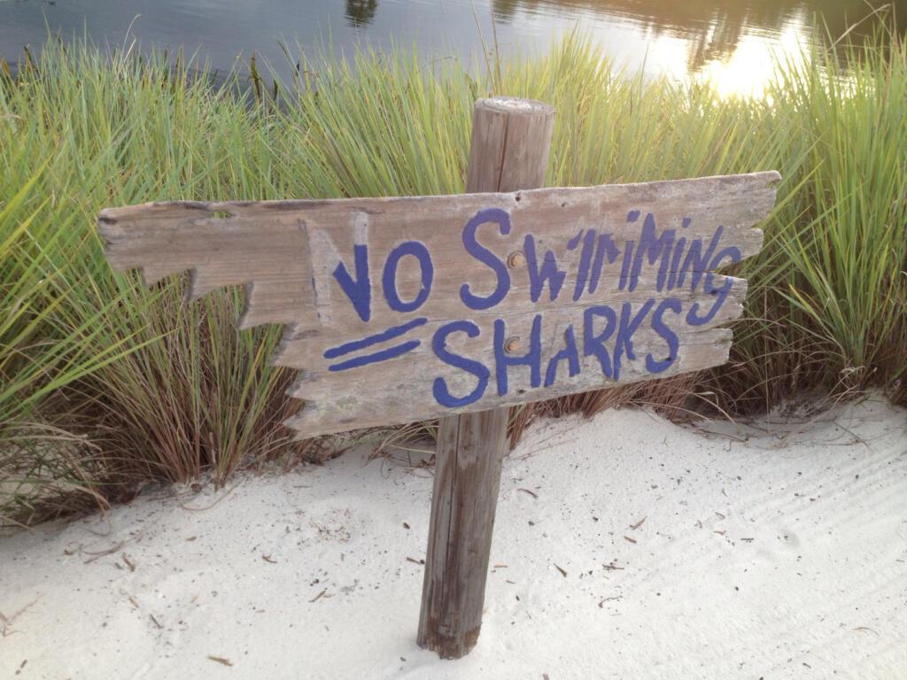 No swimming sharks sign