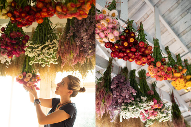 floret flowers drying hanging tips - lake house decorating ideas